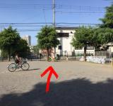 D-Bike Xstreet 20 で公園へ♪の画像(10枚目)