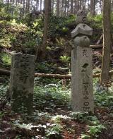 高野山~町石道180町を歩く!の画像(8枚目)
