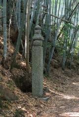 高野山~町石道180町を歩く!の画像(1枚目)