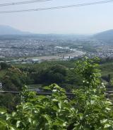 高野山~町石道180町を歩く!の画像(5枚目)