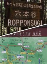高野山~町石道180町を歩く!の画像(9枚目)