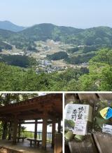 高野山~町石道180町を歩く!の画像(10枚目)