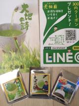 お茶で元気!リラックス!緑茶習慣始めました☆/Asamiさんの投稿