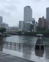 ハウスファミリーウォーク大阪大会2018の画像(3枚目)