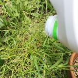 面倒な草むしりから解放!シャワータイプの『ラウンドアップ』でお手軽除草☆の画像(3枚目)