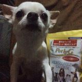 「#ペット用サプリ【免疫ミルク】☆」の画像(11枚目)
