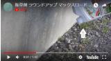 「除草剤 ラウンドアップ マックスロード AL(1.2リットル)」を使ってみた件の画像(4枚目)