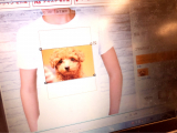 チャロのTシャツを作ってみた。の画像(2枚目)
