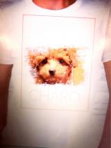 チャロのTシャツを作ってみた。の画像(5枚目)
