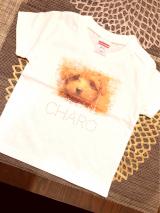 チャロのTシャツを作ってみた。の画像(8枚目)