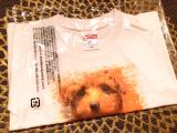 チャロのTシャツを作ってみた。の画像(7枚目)