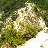 登山で起こる膝痛に「BMペプチド5000」を1か月飲んでみましたの画像(1枚目)