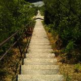 登山で起こる膝痛に「BMペプチド5000」を1か月飲んでみましたの画像(6枚目)
