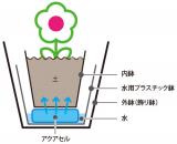 簡単水やりで植物長持ち『 saxia(サクシア)』②の画像(2枚目)