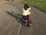 補助車なし自転車 ぱ~と2の画像(2枚目)
