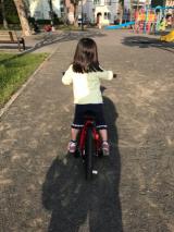 補助車なし自転車 ぱ~と2の画像(3枚目)