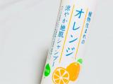 石澤研究所 植物生まれのオレンジ涼やか地肌シャンプーの画像(2枚目)