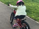 補助車なし自転車 ぱ~と2の画像(4枚目)
