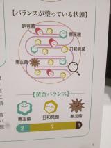 腸活の素 トリプルフローラタブレット~腸内環境を整えることが大事!~の画像(4枚目)