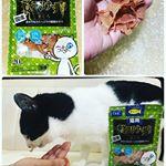 今回試させていただいたのは、株式会社ディーエイチシーさまのDHC ペット用商品内で大人気のネコちゃん用おやつ💖 猫用 贅沢けずり まぐろ480円(税抜き) 国産まぐろの魚肉に、青魚のサラサ…のInstagram画像