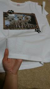 デコプリ様の「かわいいペット写真」でオリジナルTシャツの画像(6枚目)