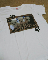 デコプリ様の「かわいいペット写真」でオリジナルTシャツの画像(2枚目)
