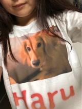 可愛いペットのオリジナルデザインTシャツ作り♪の画像(6枚目)