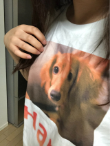 可愛いペットのオリジナルデザインTシャツ作り♪の画像(5枚目)