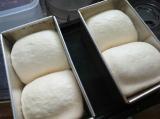 2日続きのパン焼きの画像(2枚目)