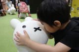 東京おもちゃショーで、アイデスのブースを見てきましたの画像(5枚目)