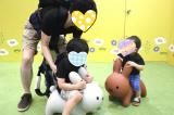 東京おもちゃショーで、アイデスのブースを見てきましたの画像(7枚目)