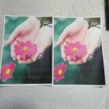 モニプラ★こまもの本舗▶EPSON 顔料互換インクの画像(3枚目)