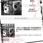 #開運グッズ #幸せ #お守り #monipla #あさくさ福猫太郎ショップファンサイト参加中のInstagram画像