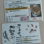 あさくさ福猫太郎の免許証と豆お守り😼😼😼 良い事がありますように🙇💕 #開運グッズ #幸せ #お守り #monipla #あさくさ福猫太郎ショップファンサイト参加中のInstagram画像
