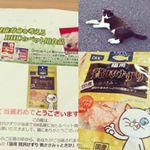 DHC当たったじぇ(=^x^=)♪って、私より高級な食品を猫様に🐈贅沢な!*#DHC #DHCPET #贅沢けずり #愛猫 #monipla #株式会社ディーエイチシーファンサイト参加…のInstagram画像