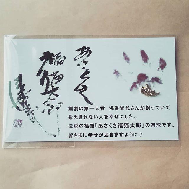 口コミ投稿:開運あさくさ福猫太郎の肉球当たりましたー!!これから次々と幸せがまいこんできま…