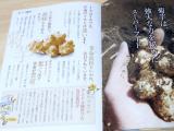 金の菊芋の画像(2枚目)