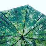 RELAX アンブレラ一見、真っ黒なよくある傘☔だけど、内側は全く別の世界開いて見上げれば、自分だけ森の中にいるみたい😆楽しい発想✨同じシリーズには宇宙や青空バージョンも…のInstagram画像