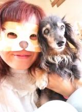 HOTな柴犬アイマスク☆の画像(9枚目)