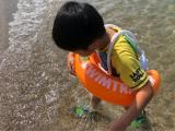 「遊びながら泳ぎの基礎を身につける スイムトレーナークラシック」の画像(2枚目)
