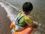 「遊びながら泳ぎの基礎を身につける スイムトレーナークラシック」の画像(3枚目)