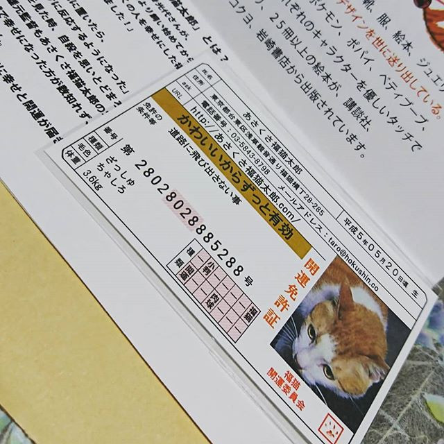 口コミ投稿:豆お守りに当選💓💓いいことあるといいなぁ«٩(*´ ꒳ `*)۶»#開運グッズ #幸せ #お守り #…