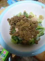 「シニアだからこそ 体にいいフード!総合栄養食NANA!」の画像(3枚目)