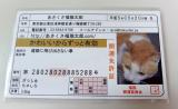 「<monitor>HOKUSHIN あさくさ福猫太郎」の画像(2枚目)