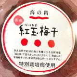 「「海の精」さんの一番人気!こだわりの梅干し「紅玉梅干」(べにたまうめぼし)。」の画像(3枚目)