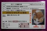 口コミ記事「あさくさ福猫太郎」の画像