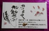 あさくさ福猫太郎の画像(2枚目)