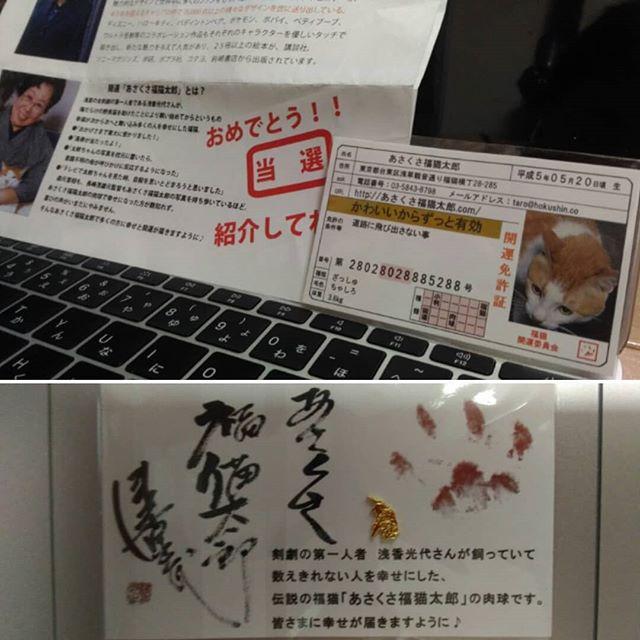 口コミ投稿:#豆 #あさくさ #福猫太郎 #何か #いい事 #あるかな 🙆#お財布に #入れてみようかな 💕#…
