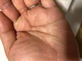 【モニター】薬用育毛エッセンスの画像(2枚目)