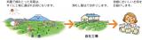 静岡県産のこだわりの上級深むし茶3煎の画像(8枚目)